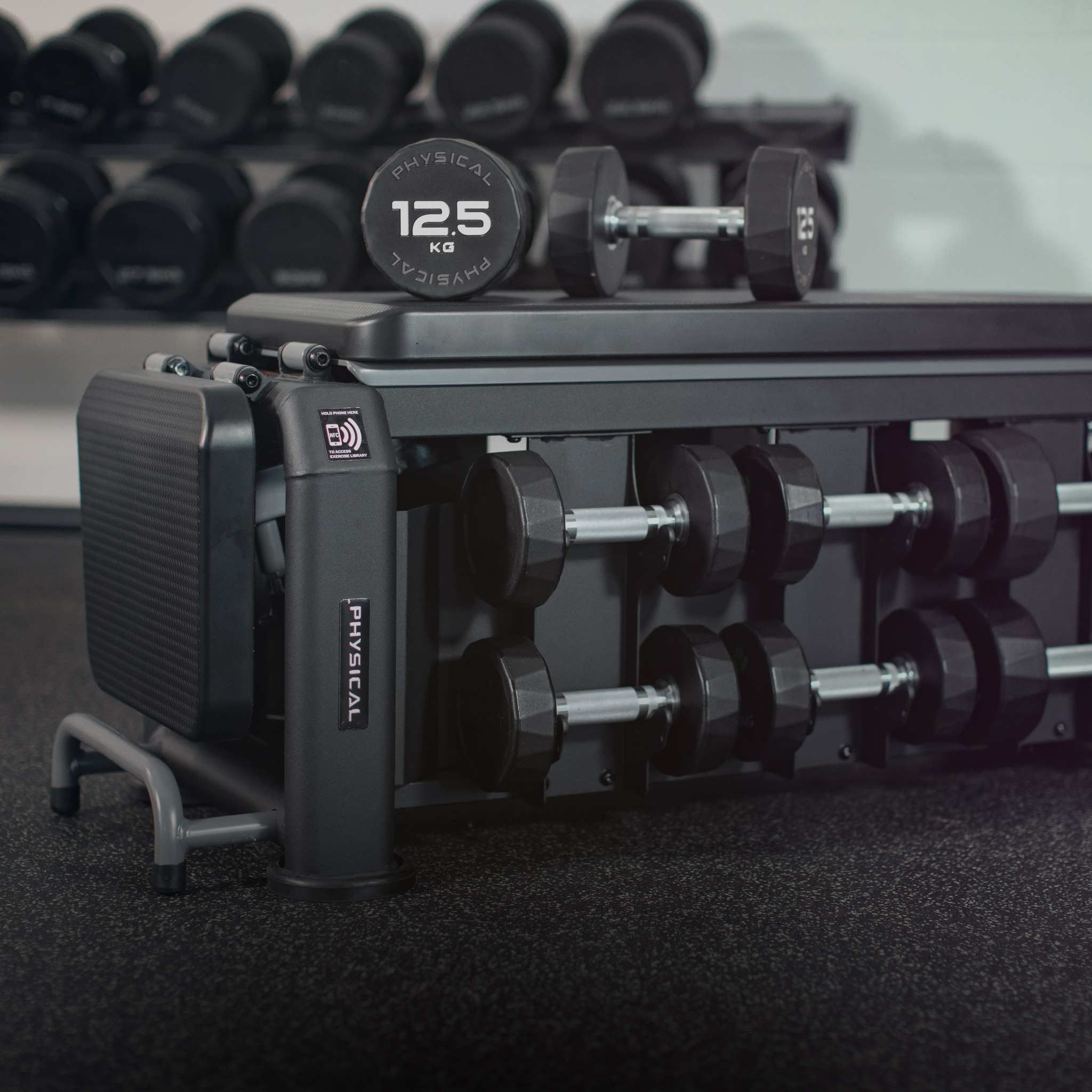 EVO BENCH WITH PU DUMBBELLS