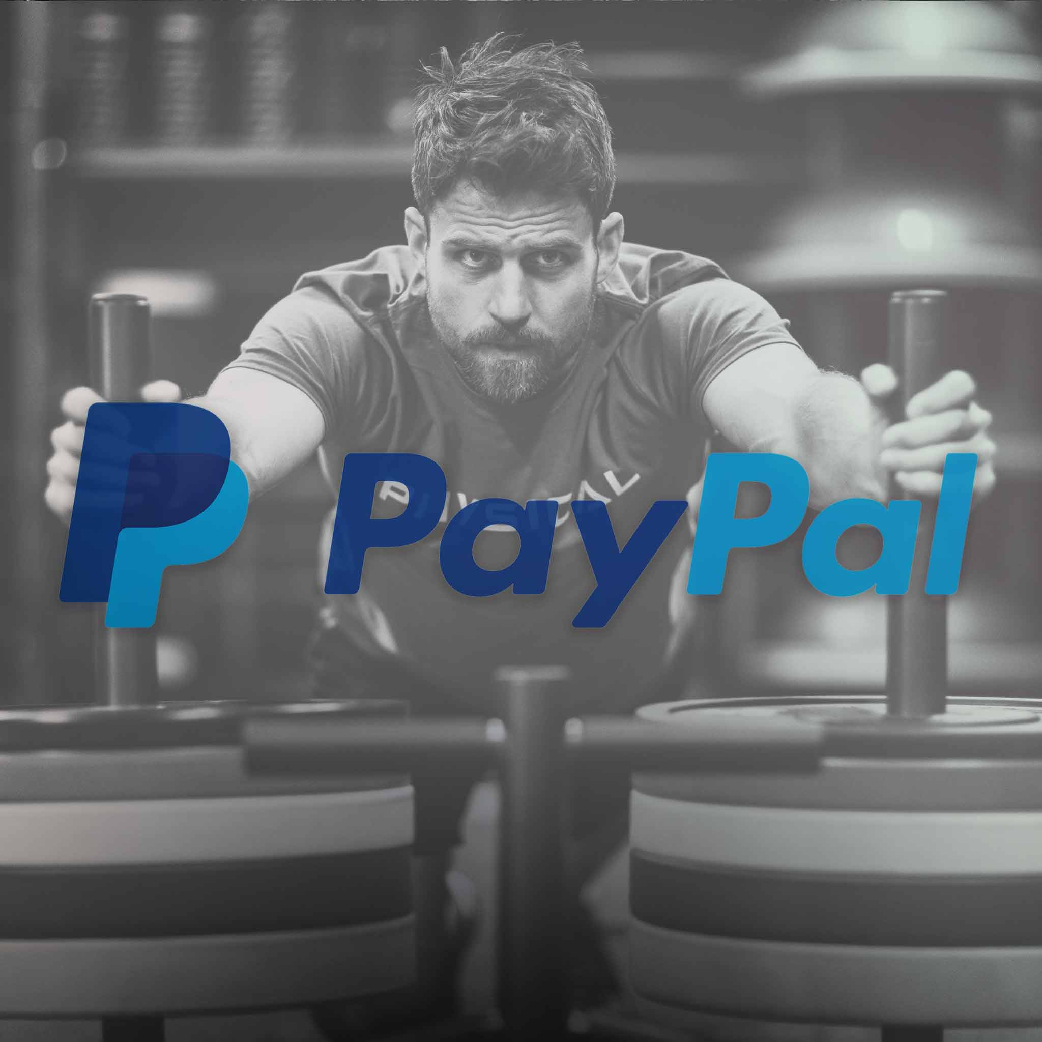 PAY IN INSTALMENTS WITH PAYPAL PAY IN 3