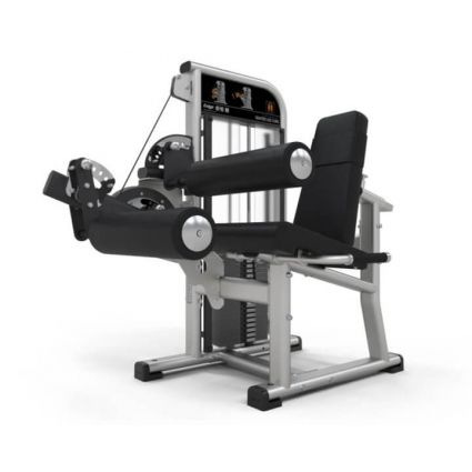 Exigo Seated Leg Curl