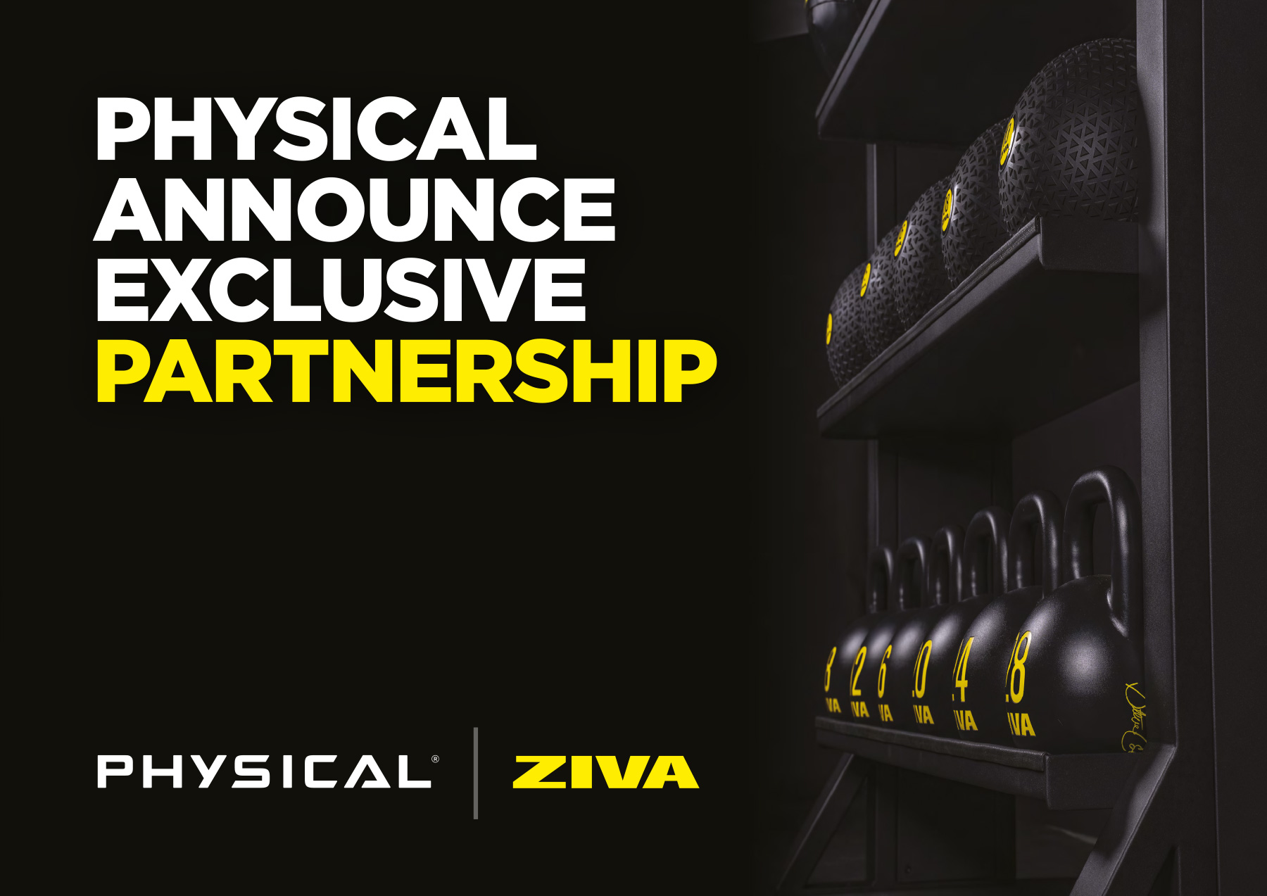 ZIVA & Physical: A new partnership to meet all needs